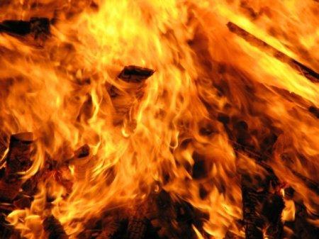 Мужчина сгорел заживо в дачном доме в Ленобласти