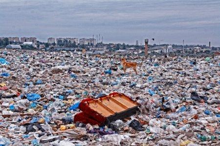 Не город, а мусорная яма. Как мы это допустили?