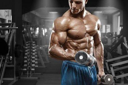 Семь правил: как ускорить мышечный рост