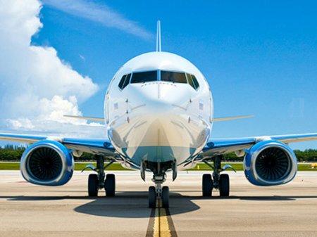 Специалисты получили доступ к переговорам пилотов упавшего эфиопского Boeing