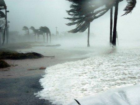 Почти 800 человек погибли в Мозамбике из-за тропического циклона