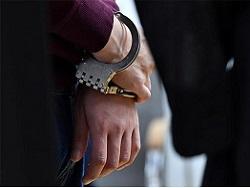 """В Санкт-Петербурге задержали четверых студентов за обращение в приёмную """"Единой России"""""""
