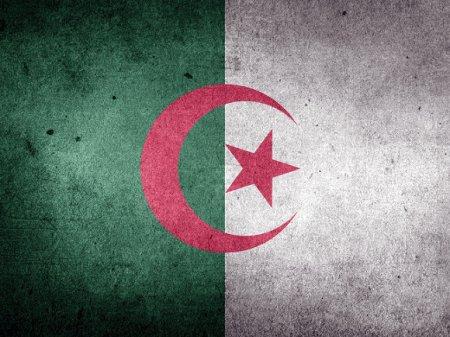 В ходе протестов в Алжире задержаны более 100 человек