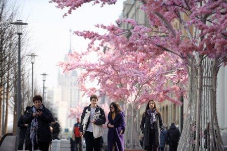 Синоптики пообещали в столичном регионе 19 градусов тепла к выходным