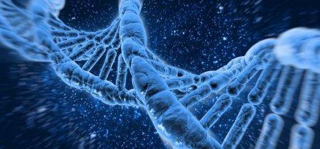 Генетическая пушка и вирусы-извозчики