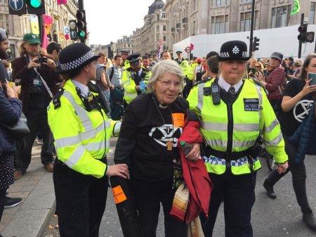 В Лондоне задержали более 500 участников экологической акции протеста