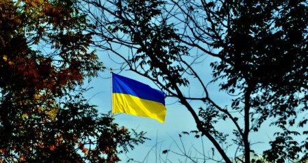 Эксперт назвал главную цель Киева при принятии закона об украинском языке