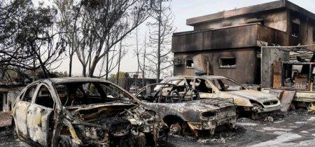 Противопожарная служба Израиля опубликовала результаты расследования причин пожаров