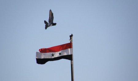 СМИ сообщили о наращивании Турцией поставок оружия сирийской оппозиции