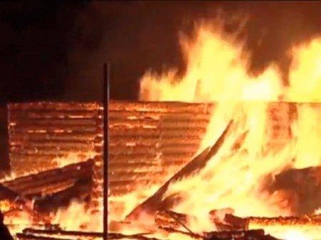 Пожилой мужчина заживо сгорел в домике на даче в Ленобласти