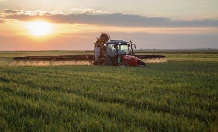 Чрезмерное использование пестицидов может привести к потере сельхозбизнеса - ФАО