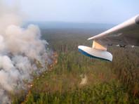 Путин распорядился подключить МО РФ к тушению пожаров в Сибири, но время уже упущено