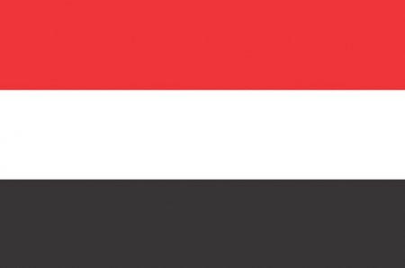 Повстанцы в Йемене покинули захваченный дворец президента
