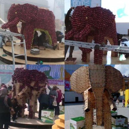 Жители Ставрополя в День города разнесли фигуру слона из яблок и арку из трав