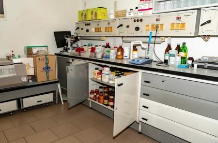 Учёный рассказала о редком для России виде рака, от которого нет лекарства