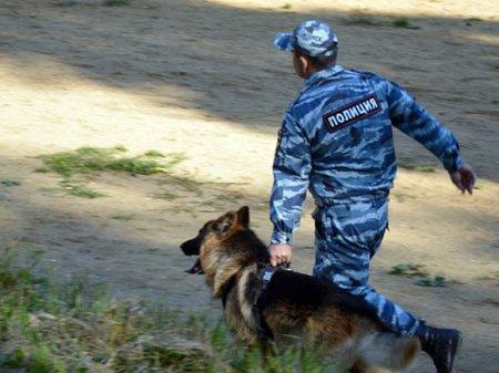 СМИ: Два отделения Сбербанка, в том числе центральное, «заминированы»