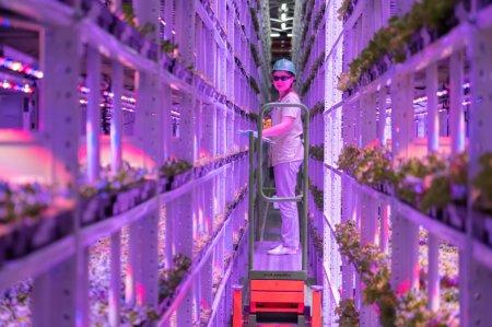 Собянин посетил экоферму, построенную на месте табачной фабрики в Москве