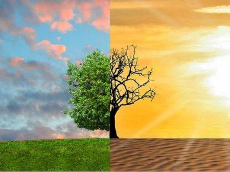 В климатическом саммите в Мадриде примут участие представители 196 стран