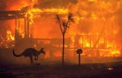 Ад на Земле: увидим ли мы снова Австралию прежней?