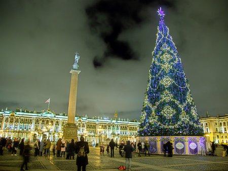 Руферы поздравили россиян с высоты главной петербургской елки на Дворцовой площади (видео)