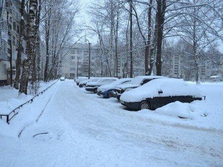 Петербуржцы дождались снега (фото)