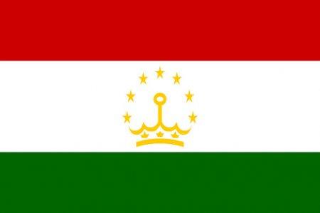 Посольство Таджикистана не подтвердило гибель своих граждан на пожаре в Подмосковье