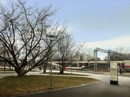 Почти 130 деревьев и 1,5 тыс. кустарников высадят вблизи станции МЦД-1 «Сетунь»