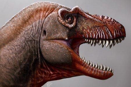 """Обнаружен новый вид динозавра - """"жнец смерти"""""""