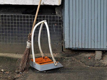 В Саратове дворники фотографируются с привезенным с собой мусором (видео)