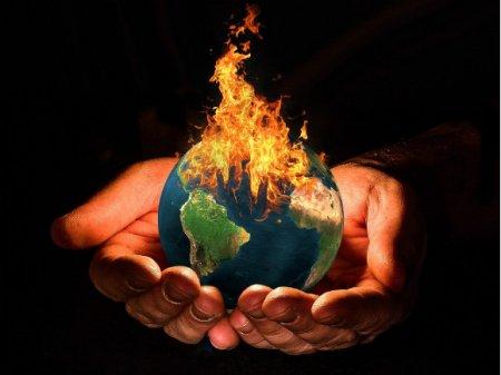 Через 50 лет из-за изменений климата на планете вымрет треть животных и растений