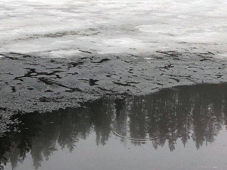 Под Вологдой два мальчика провалились под лед, один погиб