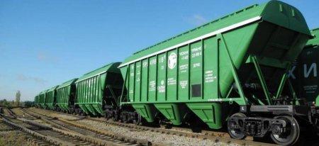 Казахстан лидирует по импорту алтайского зерна в начале 2020 года