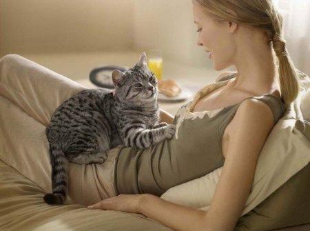 Причины того, зачем кошки топчутся передними лапами