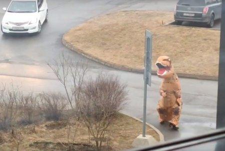 В Ленобласти «динозавр» вынес мусор (видео)