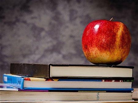 Для школьников в Подмосковье проведут последний звонок онлайн