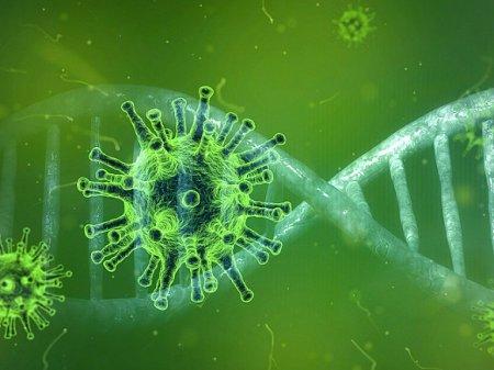 Ученые получили неожиданные данные о происхождении COVID-19