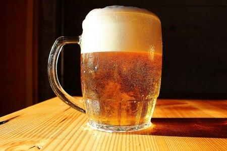 Названо любимое пиво россиян
