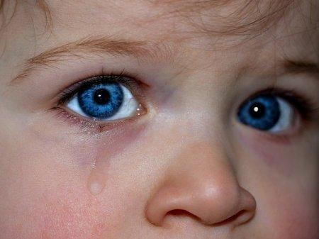 Под Волгоградом в выгребной яме нашли труп шестилетнего мальчика