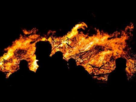 Шесть человек погибли в результате «странного» лесного пожара рядом с ЛНР