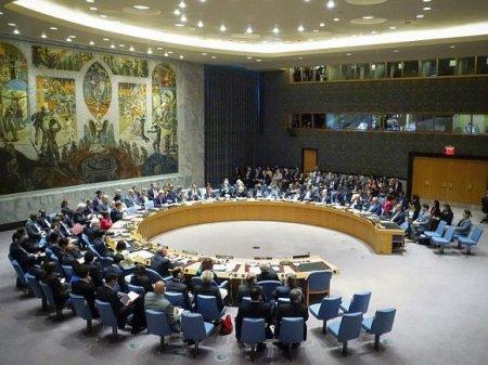 В Совбезе ООН отклонили вторую резолюцию России по Сирии