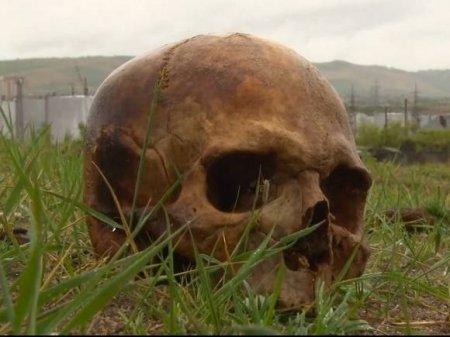 В Ленобласти женщине привезли на дачу грунт с человеческими костями и черепом