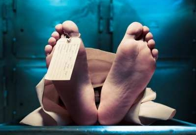 """""""Ходим по головам"""": работники морга Кузбасса показали десятки тел умерших от COVID-19"""