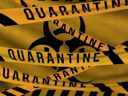 Швеция планирует ввести карантин из-за коронавируса