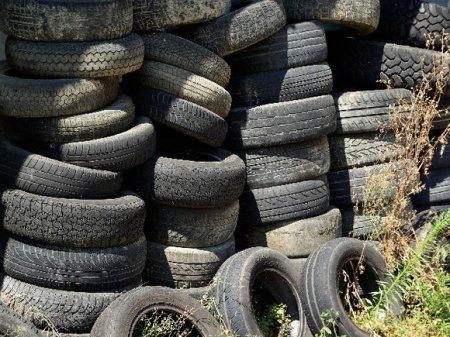 Жители Петербурга и Ленобласти избавились от 67 тонн покрышек на экоквесте