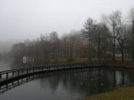 Тело школьника выловили из пруда в Москве