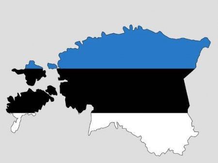 Жители Эстонии потребовали от Германии компенсацию за «оккупацию» и «700 лет рабства»