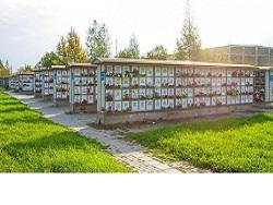 В Череповце построят частный крематорий