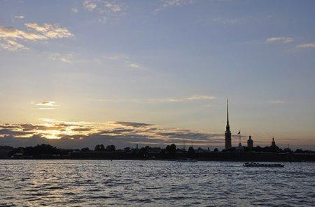 В рюкзаке под Петербургом нашли расчлененное тело женщины