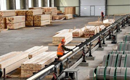 В России возник дефицит древесины для строительства домов