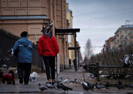 Росстат: Население России с начала 2021 года уменьшилось на 304,5тыс. человек